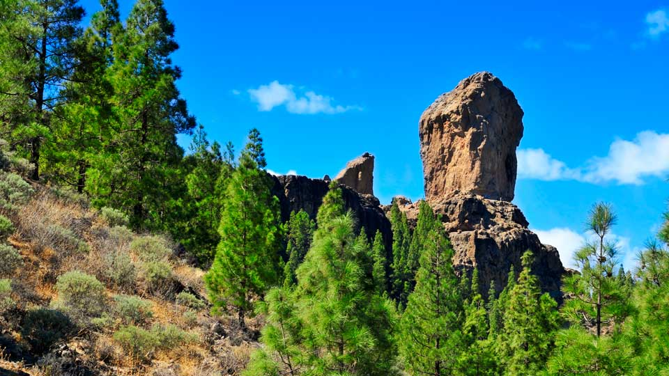 Climbing Up Roque Nublo