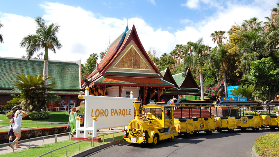 Free Express Train in Loro Parque