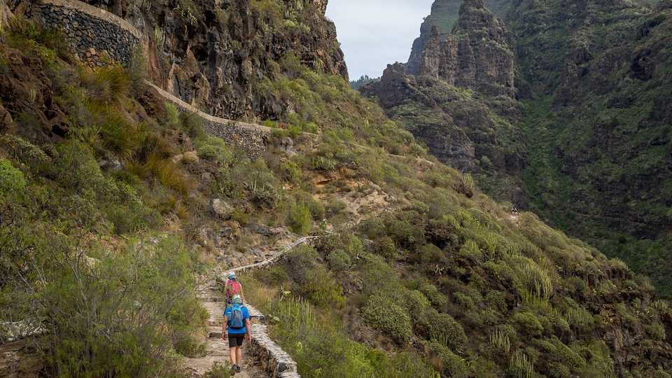 See the Wondrous Terrain of Adeje by Hiking Across Barranco del Infierno