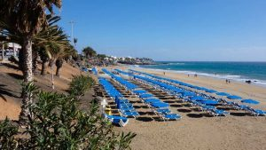 Rows of Sunbeds and Parasols