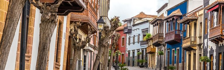 Historical Houses of Teror